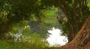 spanish-creek-belize-photo-14