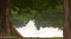 spanish-creek-belize-photo-6